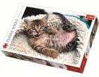 Pisică veselă cu 1000 de elem. art.10448