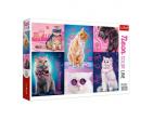 Culori neon Super pisici 1000 elem. art.10581